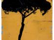 "DORIA PAMPHILI VII | 2021 | Oil & Acrylic on Paper | 28.5"" x 20"""