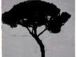 "LARGO ARGENTINA V (GREY) | 2021 | Oil & Acrylic on Paper | 28.5"" x 20"""